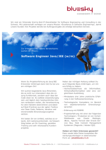 Software Engineer Java/JEE (w/m) - Bluesky IT
