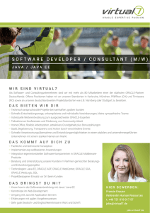 SOFTWARE DEVELOPER / CONSULTANT (M/W)