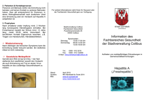 Flyer Hepatitis A