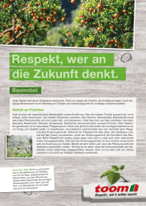 PDF-Download - toom Baumarkt