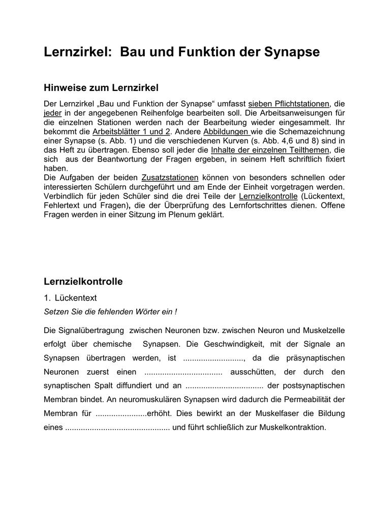 LZ_Bau und Funktion der Synapse