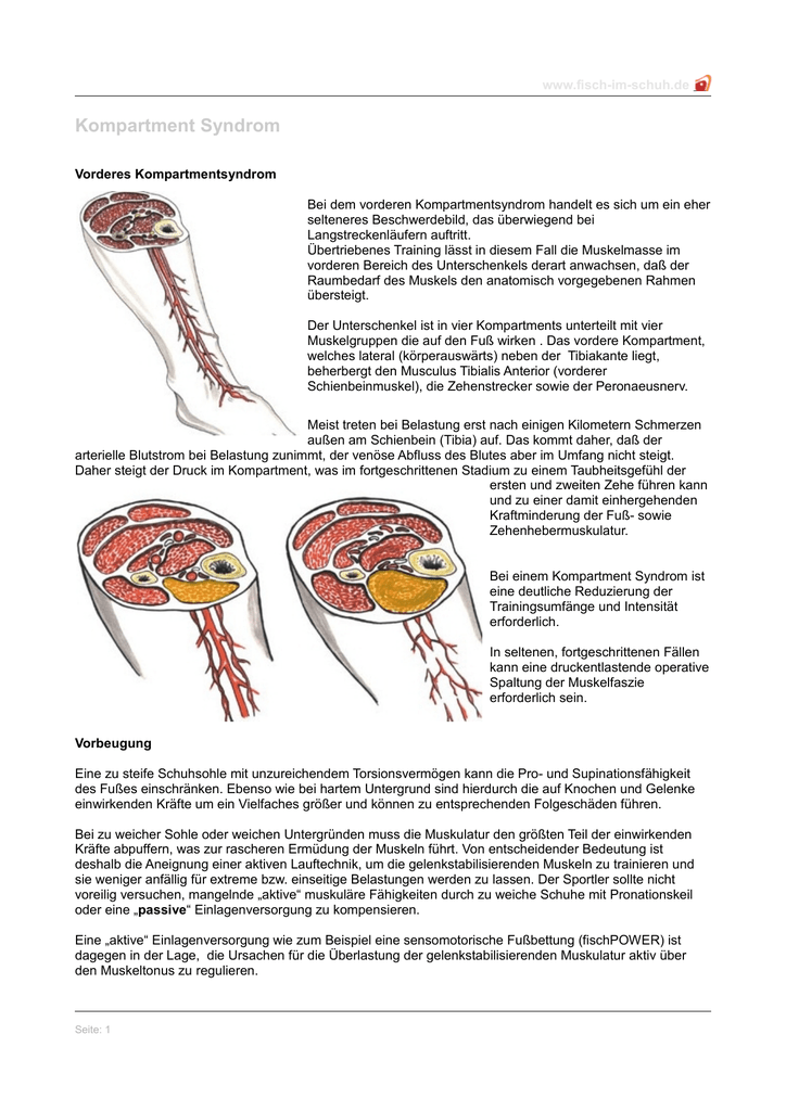Großartig Knochen Des Unterschenkels Bilder - Anatomie und ...