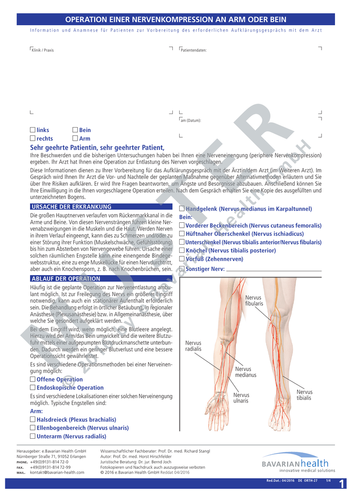Tolle Bein Sehnen Anatomie Bilder - Anatomie Ideen - finotti.info