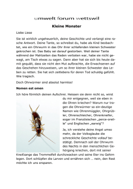 Kleine Monster - Verena Berger