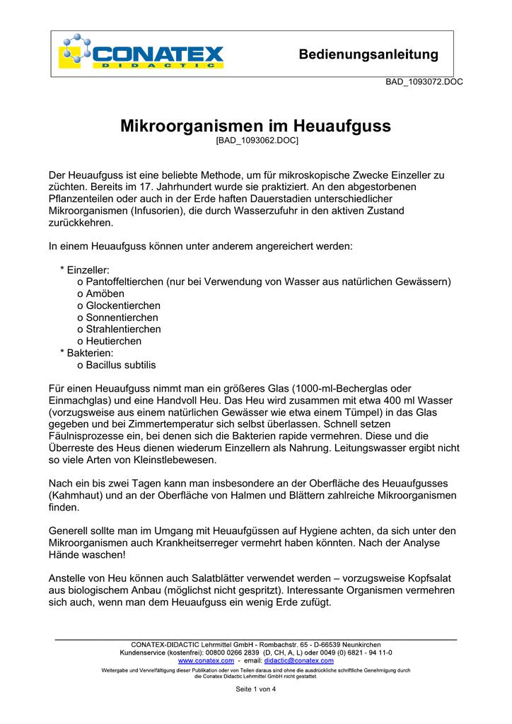 Ausgezeichnet Mikroorganismen Arbeitsblatt Klasse 8 Ideen - Super ...