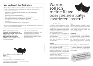 Kastrationsflyer_D