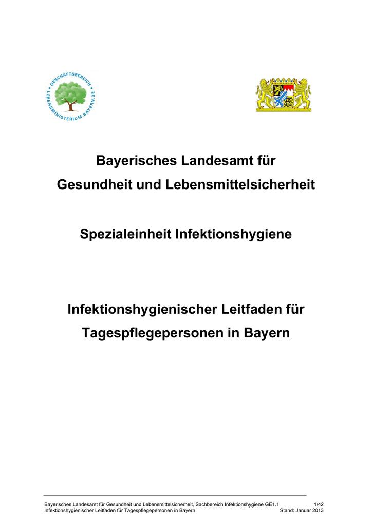 Infektionshygienischer Leitfaden Für Tagespflegepersonen In Bayern
