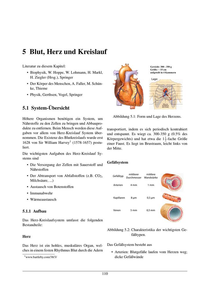 5 Blut, Herz und Kreislauf