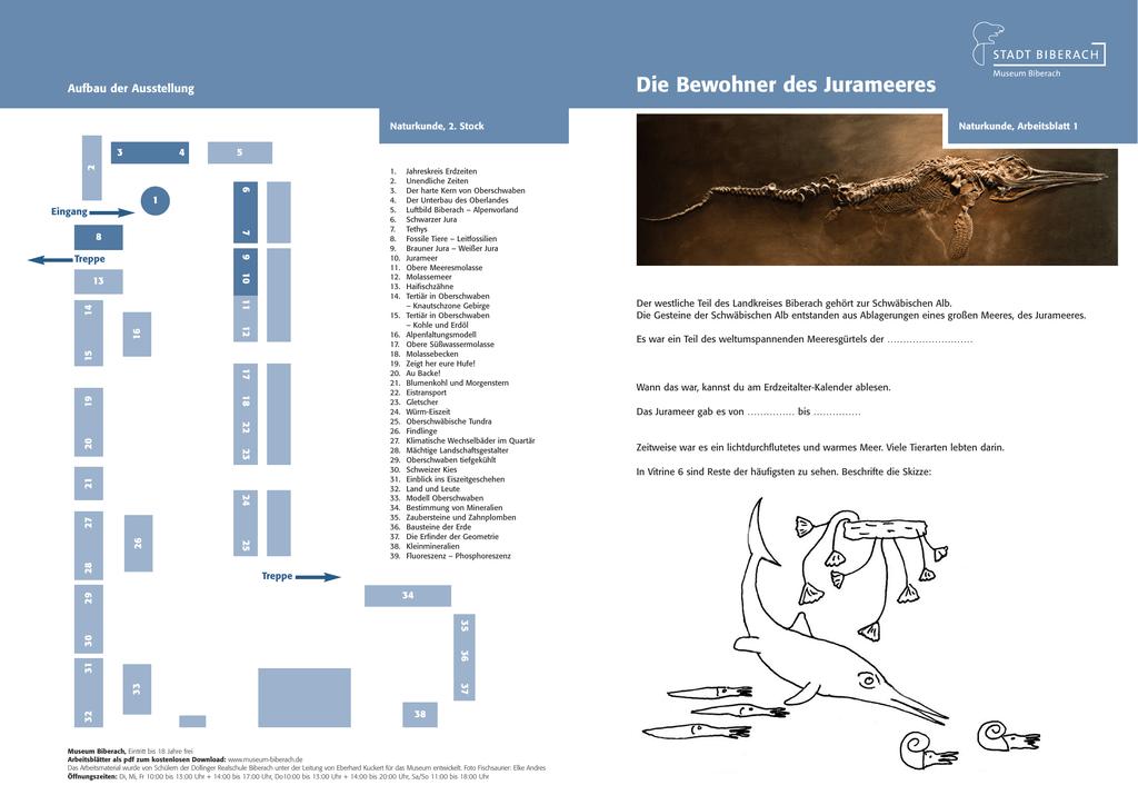 Contemporary Leitfossils Arbeitsblatt Image Collection ...