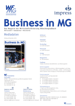 BusinessinMG_Mediadaten_Januar_2017 (927,8 KiB)