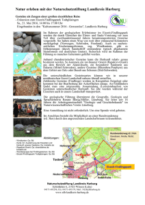 Flyer NLH - Geologische Exkursion 2016