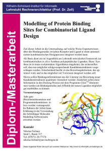 Modeling of Protein Binding Sites for Combintorial Ligand Design