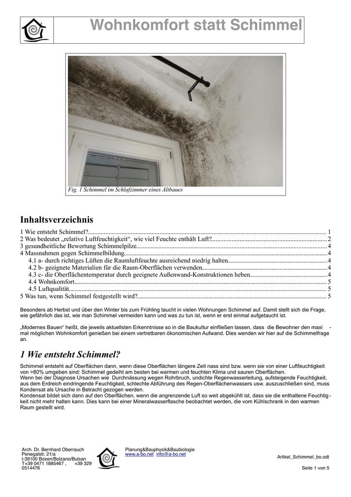 Artikel Zu Wohnkomfort Und Schimmel