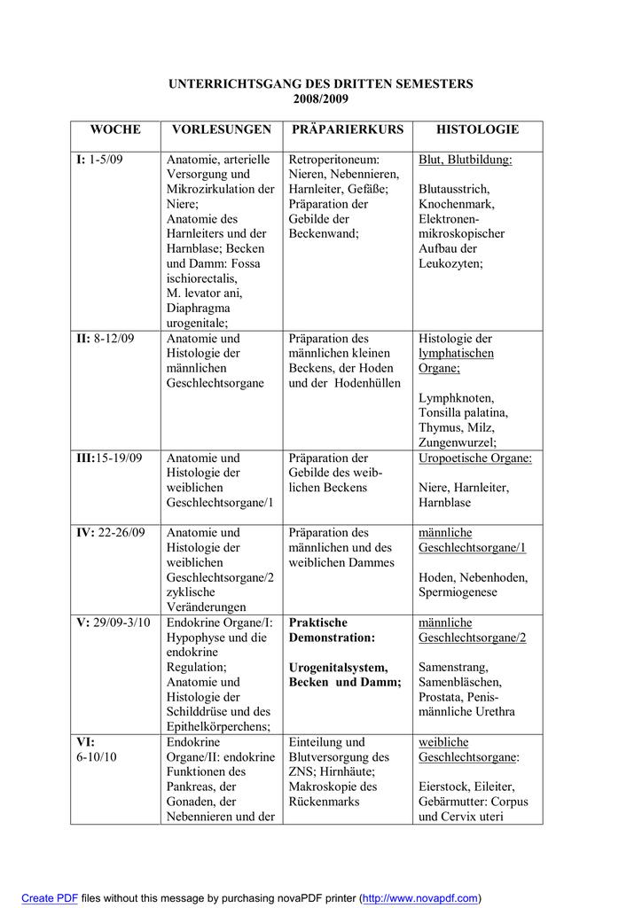 UNTERRICHTSGANG DES DRITTEN SEMESTERS 2008/2009