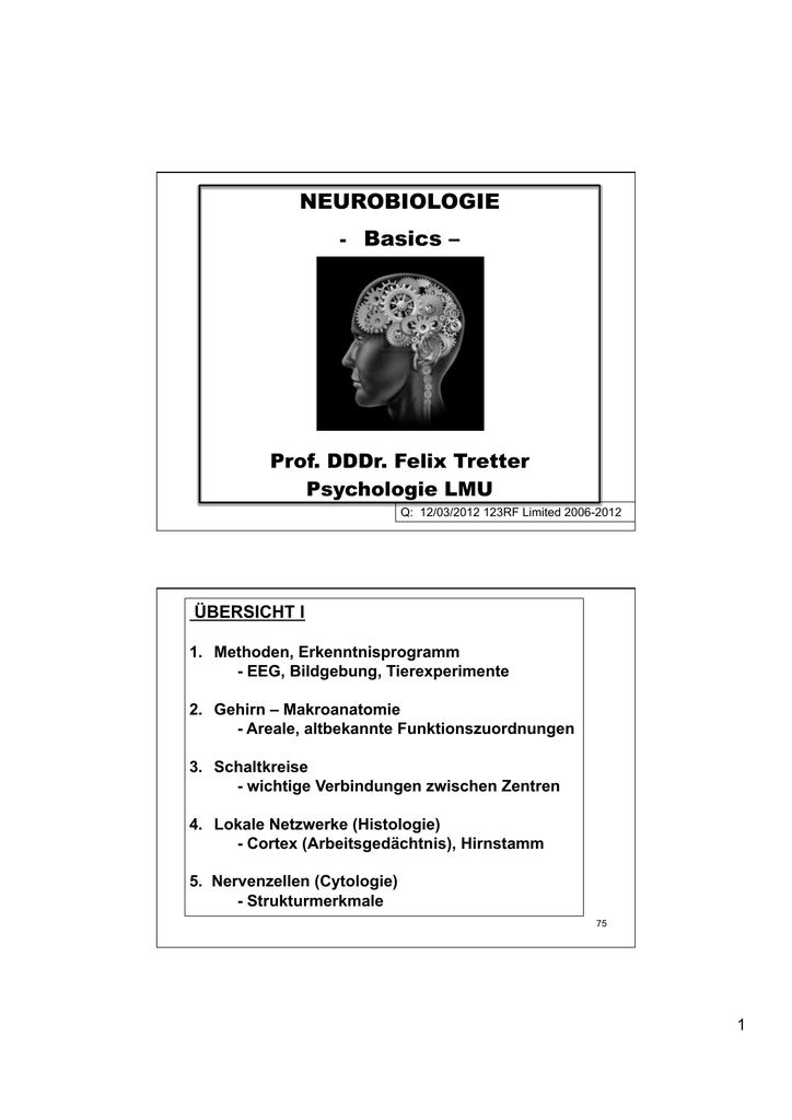 SFU-Tretter-Neurow-GL