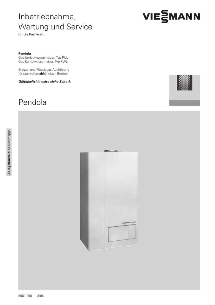 Pendola Inbetriebnahme, Wartung und Service