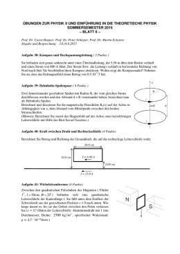 ubung elektrische und magnetische felder wise 2012 13. Black Bedroom Furniture Sets. Home Design Ideas