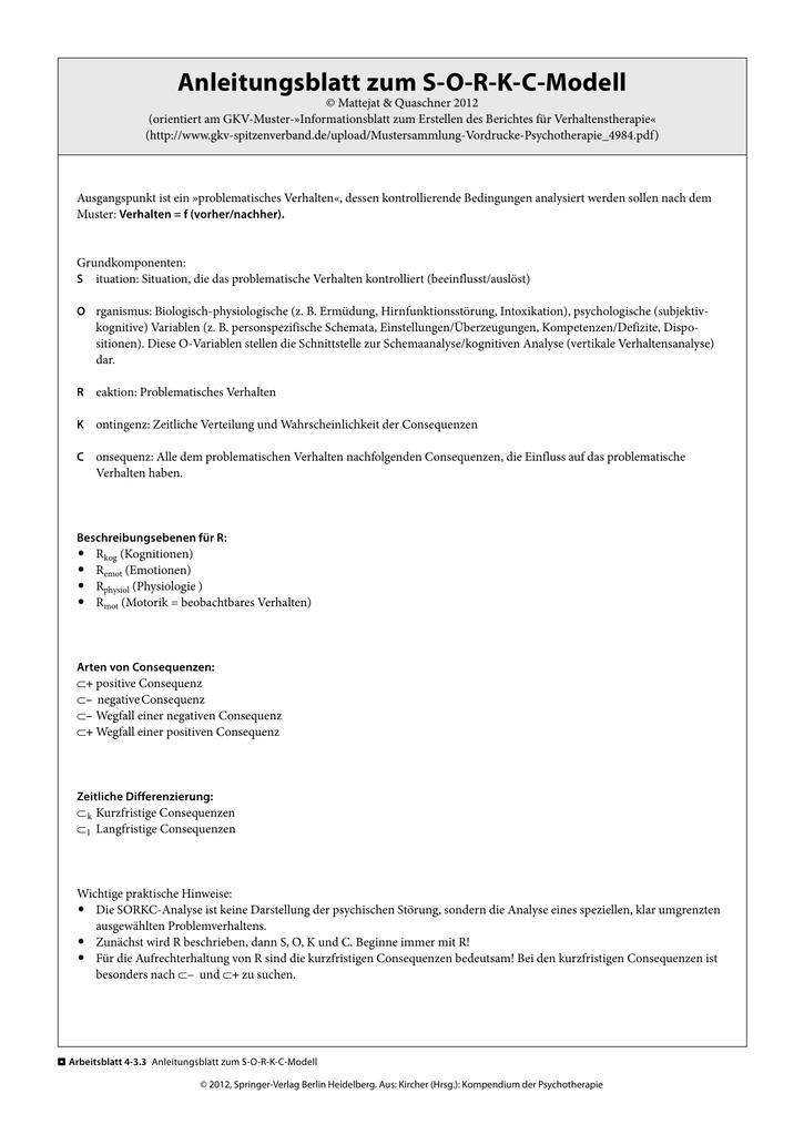 Anleitungsblatt zum SORKC-Modell