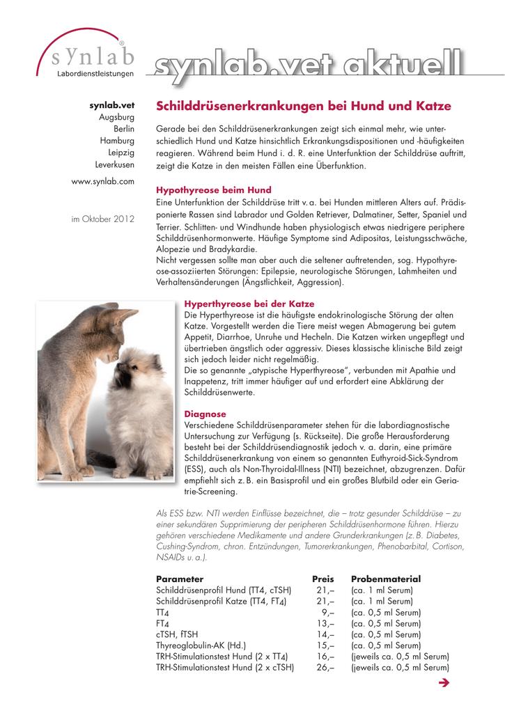 schilddrüsenerkrankungen beim hund