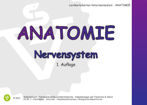 anatomie - Vetbrainfood