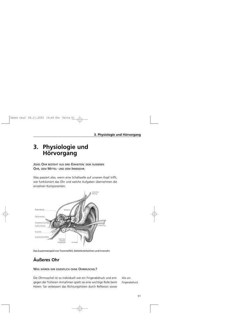 3. Physiologie und Hörvorgang