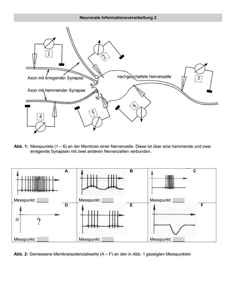 Arbeitsblatt Layout Erstellen : Ungewöhnlich line design arbeitsblatt sechs zeitgenössisch