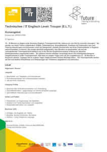 Technisches / IT Englisch Level: Trouper (E.L.T.)