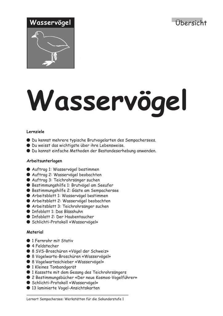 Perfect Beobachtung Arbeitsblatt Sketch - Kindergarten Arbeitsblatt ...