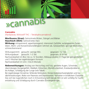 Cannabis - machoepis