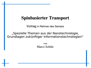 Spinbasierter Transport