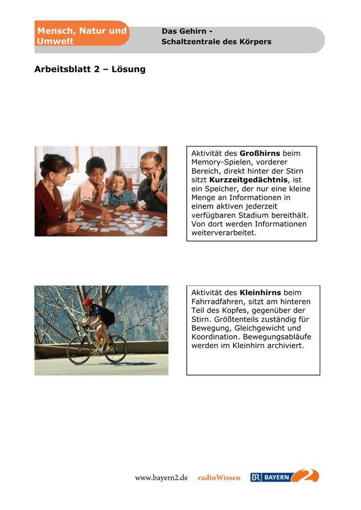 Niedlich Cloze Aktivität Arbeitsblatt Ideen - Arbeitsblätter für ...