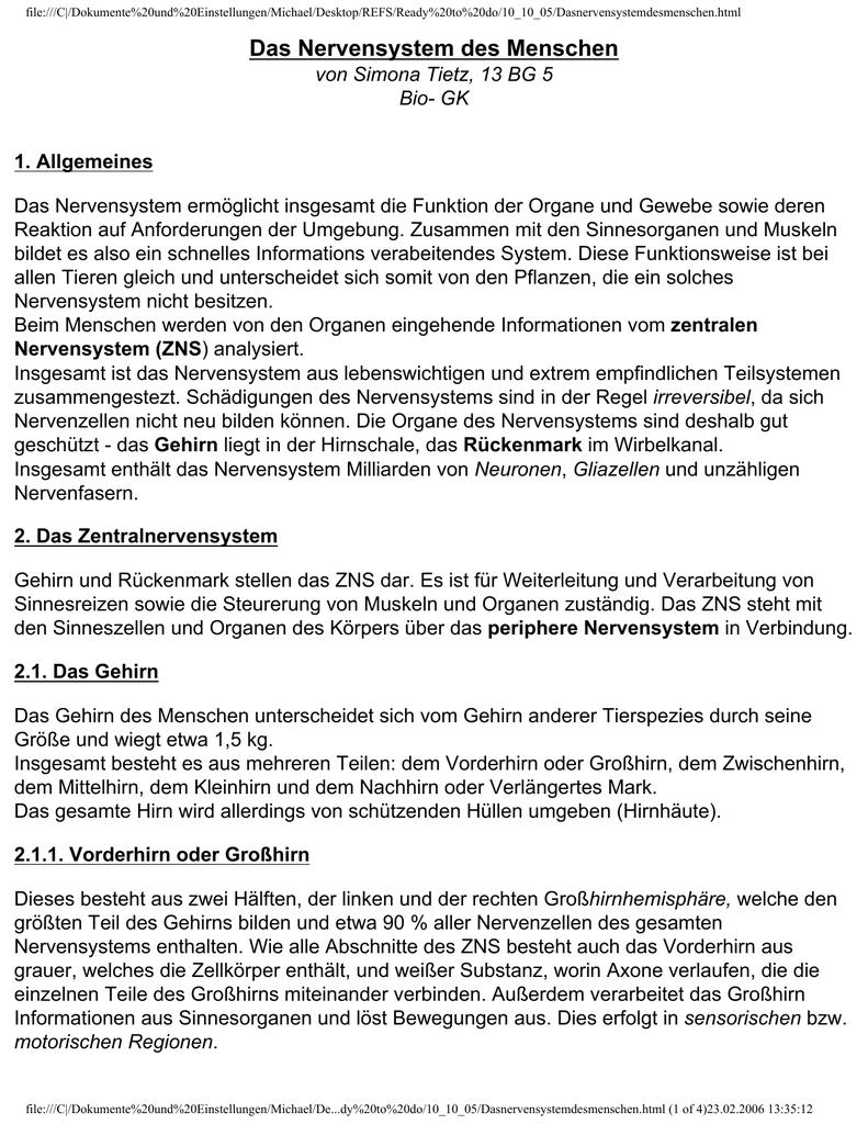 Atemberaubend Gehirn Diagramm Großhirn Galerie - Anatomie Von ...