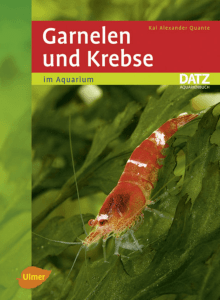Untitled - Buch.de