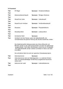 56 Assistent Titel 5f Regel Synonym Choledocholithiasis Text Titel