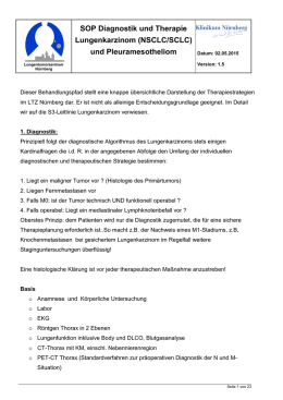 Behandlungspfad_Version 1 8 _20 04 2015