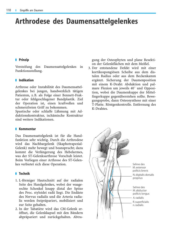 Groß Bänder Der Daumen Anatomie Fotos - Anatomie und Physiologie des ...