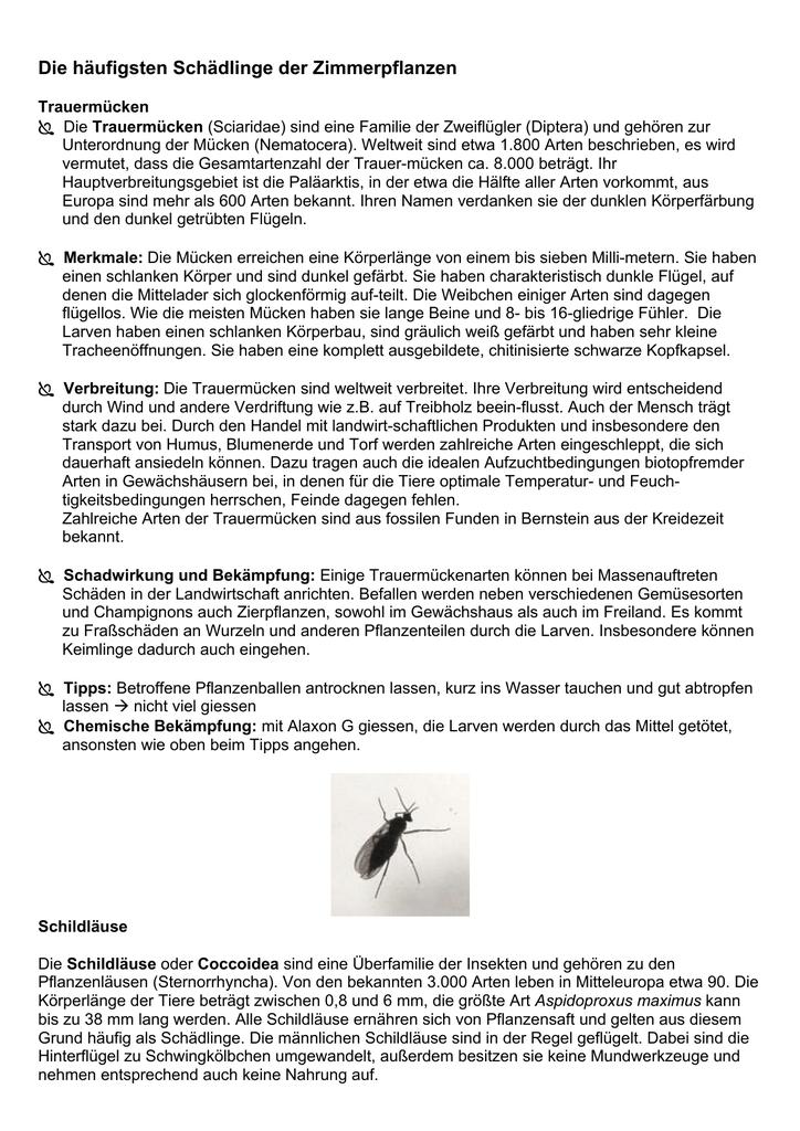 bekämpfung tiere in blumenerde