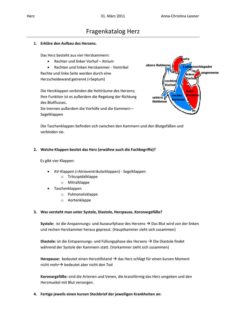 Schön Vorhöfe Des Herzens Ideen - Menschliche Anatomie Bilder ...