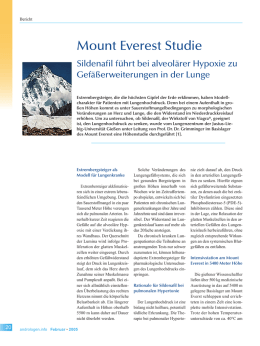 Mount Everest Studie