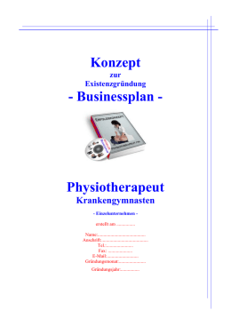 Konzept - Businessplan