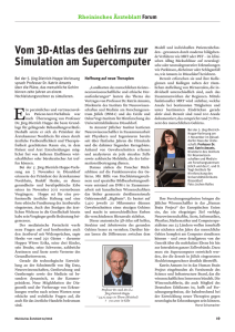 Vom 3D-Atlas des Gehirns zur Simulation am Supercomputer