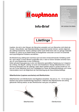 Lästlinge Info-Brief