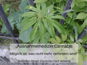 """Ausnahmemedizin Cannabis - Alternative Drogenpolitik"