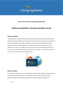 Software-Entwicklerin / Business Analystin (m/w) - Rising
