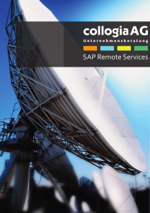 SAP Remote Services
