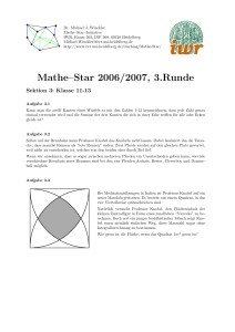 Mathe–Star 2006/2007, 3.Runde