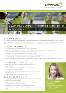 LEAD DEVELOPER / CONSULTANT (M/W)