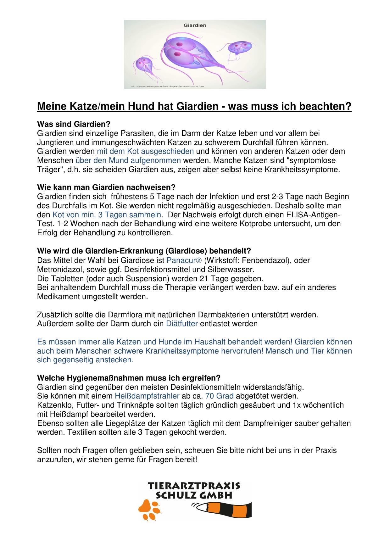 Giardien Handout Tk Kelheim
