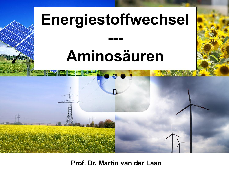 Energiestoffwechsel