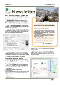 BO Newsletter 12.2010
